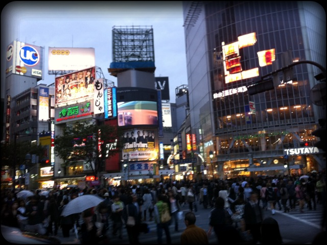 photo_7.JPG